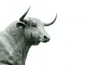 Ripple Blockchain - Flare Network triggers XRP bull market